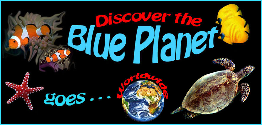 Discover the blue Planet...